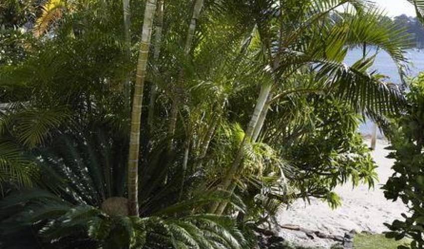 Villa 5557 in Australia Main Image