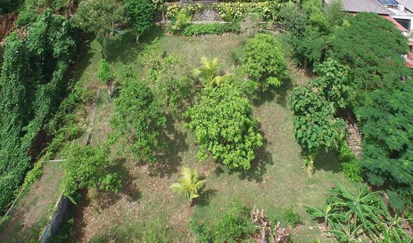 Villa 3181 in Bali Main Image