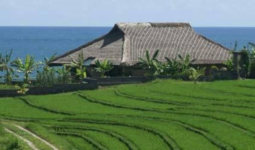 Villa 3336 in Bali Main Image