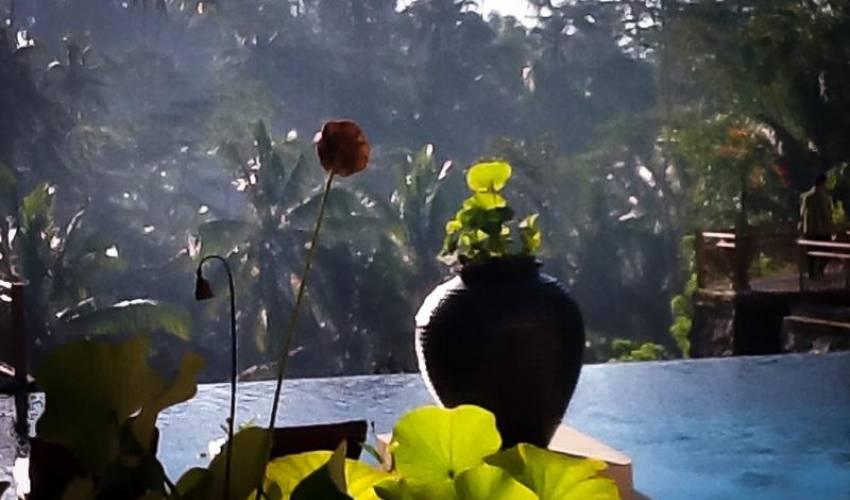 Villa 398 in Bali Main Image