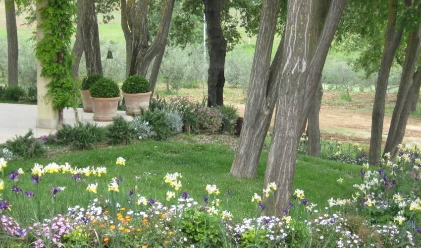 Villa 997 in Italy Main Image
