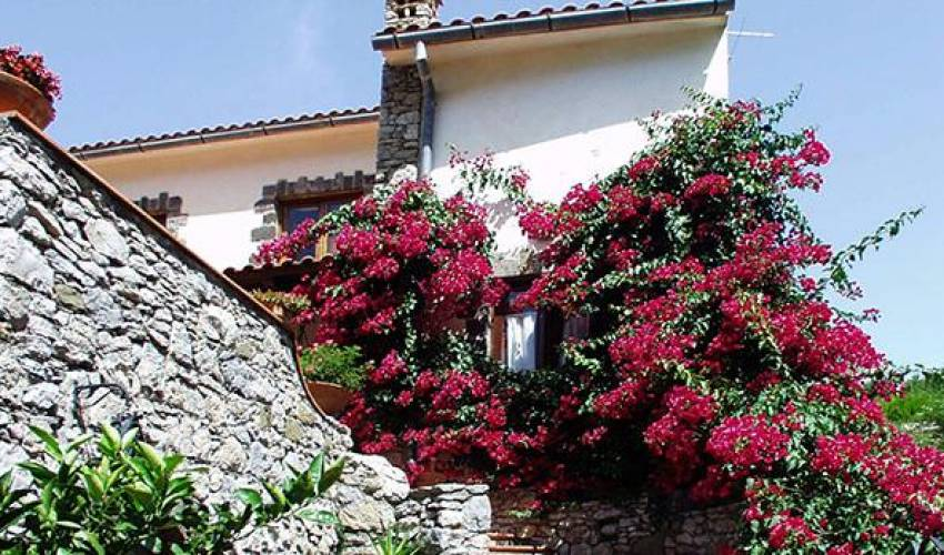 Villa 9152 in Italy Main Image