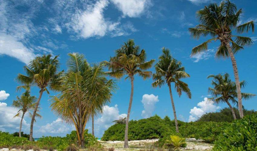 Villa 1326 in Maldives Main Image