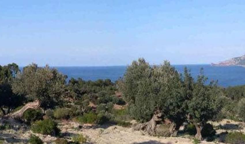 Villa 1111 in Spain Main Image